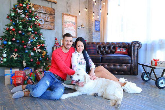 Christmas Present Ideas for a Dog Lover